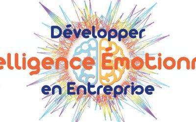 """Formation """"Animateur Intelligence Emotionnelle"""""""